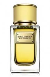 Dolce & Gabbana Velvet Mimosa Bloom